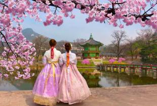 โปรโมชั่น Booking.com โรงแรมและที่พักในกรุงโซล เกาหลีใต้ เริ่มเพียง 632 บาท เท่านั้น