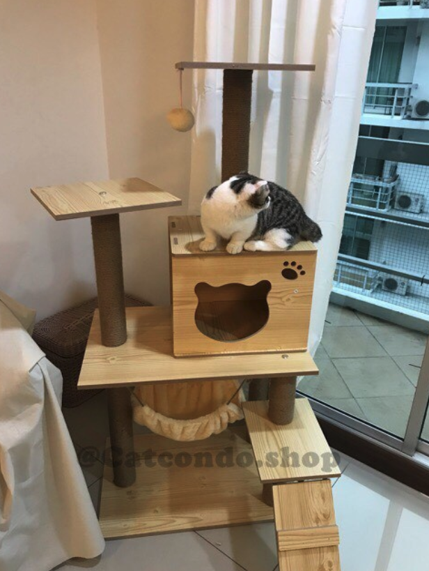 ส่วนลด Shopee สำหรับคอนโดแมว ไม้ทั้งหลัง ที่ลดถึง 9% เหลือราคาเพียงแค่ 1,179 บาท