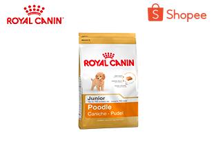 Royal Canin Poodle Junior อาหารลูกสุนัข พันธุ์พุดเดิ้ล อายุต่ำกว่า 10 เดือน 1.5 กิโลกรัม