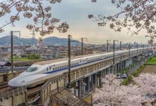 โปรโมชั่น ตั๋ว JR Pass ราคาถูก ใบเดียวเที่ยวได้ทั่วญี่ปุ่น! ซื้อล่วงหน้าจาก H.I.S.Go ได้แล้ววันนี้