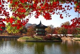 ข้อเสนอพิเศษสำหรับโรงแรมญี่ปุ่นเกาหลีใต้ ลดสูงสุด 60%