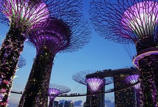 จองที่พักสิงคโปร์ (Singapore) จากโรงแรมในเครือ Accor Hotels เริ่มเพียง 2,616 บาท*