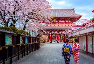 Accor Hotels โปรโมชั่น เที่ยวญี่ปุ่นแบบสบายกระเป๋า จองโรงแรมในญี่ปุ่นในเครือ Accor Hotels ลดสูงสุด 30%