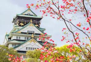โปรโมชั่น expedia บินญี่ปุ่น ราคาพิเศษกับการบินไทย เริ่มต้นเพียง 16,410 บาท